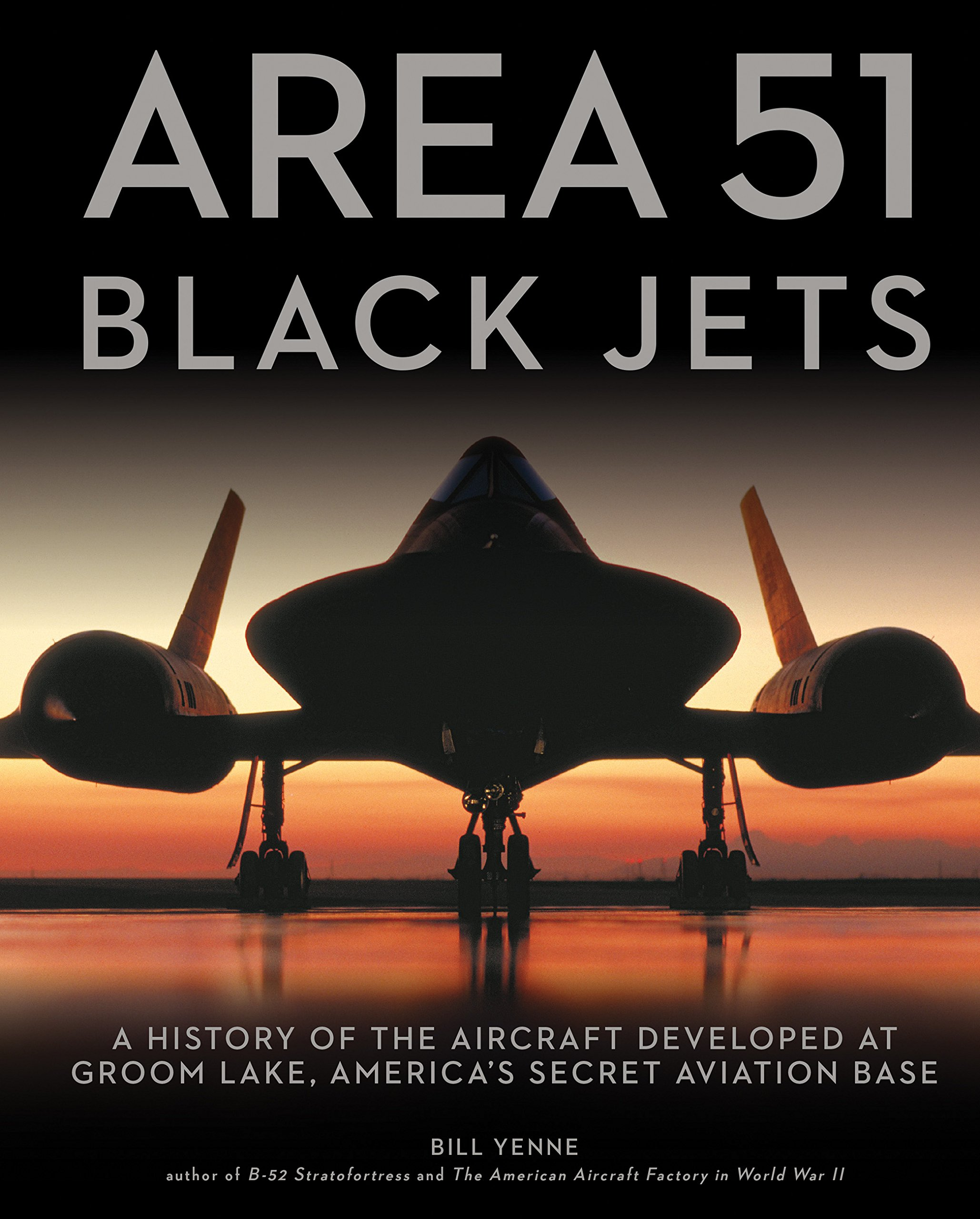 Download Area 51 - Black Jets: A History of the Aircraft Developed at Groom Lake, America's Secret Aviation Base PDF