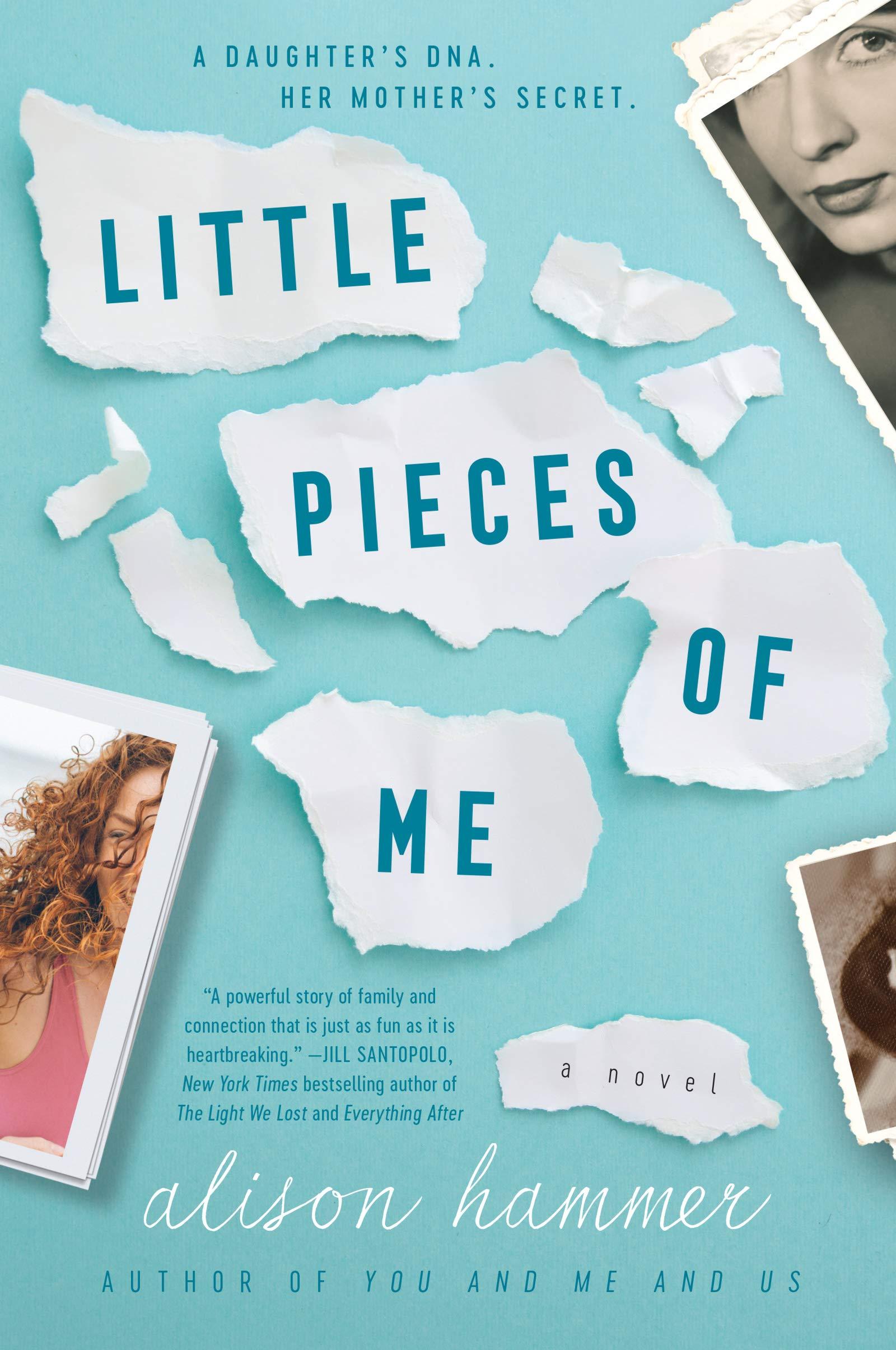 Little Pieces of Me: A Novel: Hammer, Alison: 9780062934871: Amazon.com:  Books