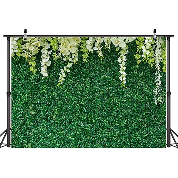 HD Green Leaves Backdrop Natural Scenery Photography Background 7x5ft Themed Party Photo Booth YouTube Backdrop GYMT543