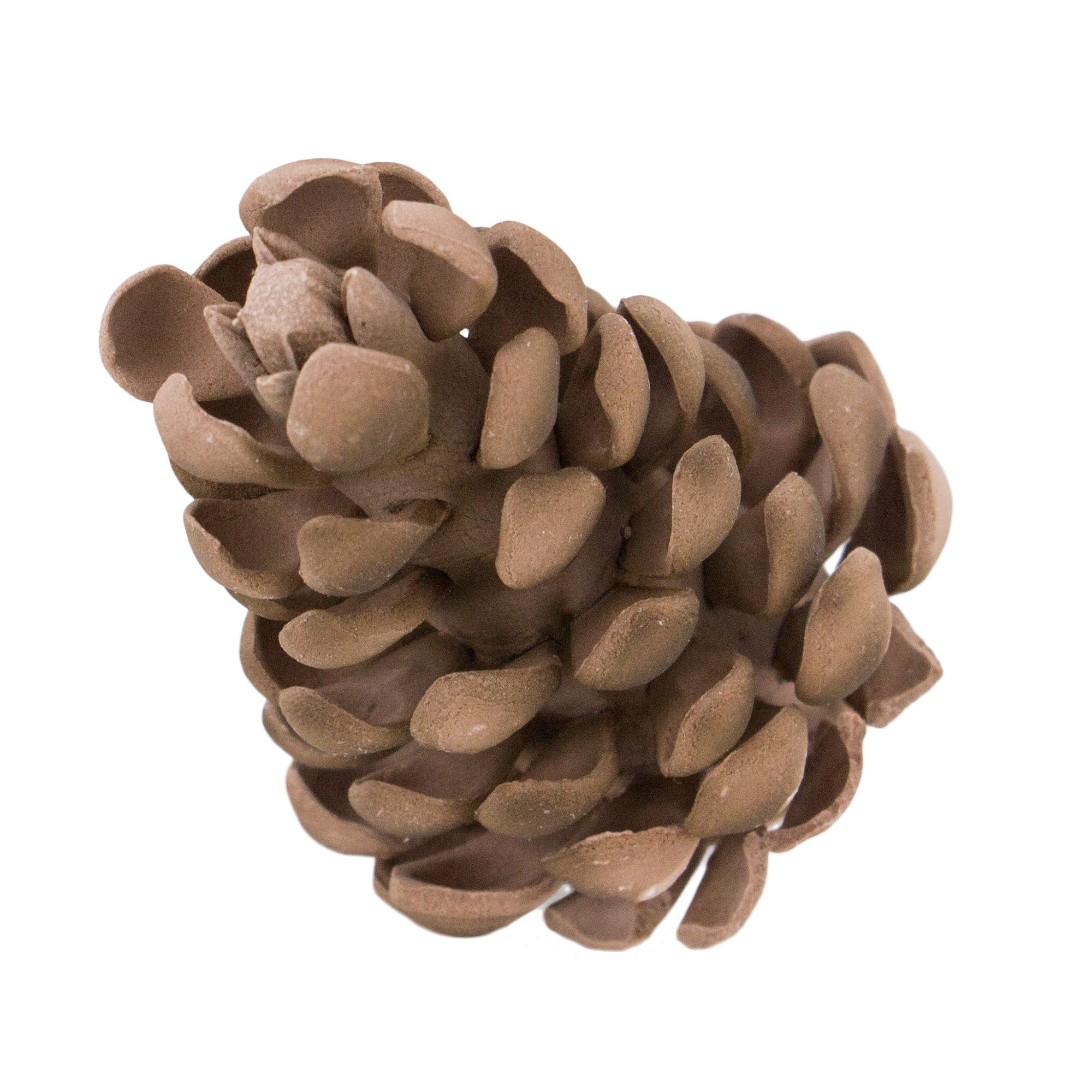 Pinecone Large, 20 Count
