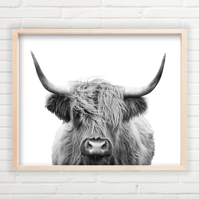Highland Cow Wall Art (Unframed 11x14 inch Farmhouse Print, Fine Art Cow Wall Decor, Farmhouse Decor, Minimalist Art, Cow Wall Art, Great Gift, Highland Cow Wall Decor)