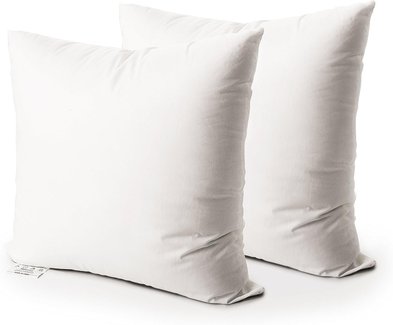 EDOW Throw Pillow Insert