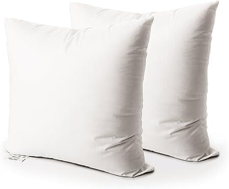 Amazon Com Edow Throw Pillow Insert Set Of 2 Down Alternative Polyester Square Form Decorative Pillow Cushion Sham Stuffer White 12x12 Kitchen Dining