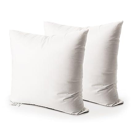 Amazon Edow Luxury Decorative Pillow Insert4040lbSet Of 40 Delectable Washable Decorative Pillows