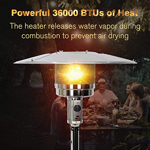 Vilobos Outdoor Patio Heater Standing Gas LP Propane Heater