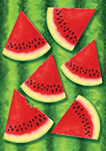 Toland Home Garden Watermelon Chill 28 x 40 Inch Decorative Summer Red Fruit Seed House Flag