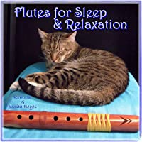 Native American Flute for Sleep & Relaxation with Sounds of Nature (For Massage,...