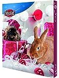 Trixie Calendrier de L&Apos Avent Marron pour Petits Animaux