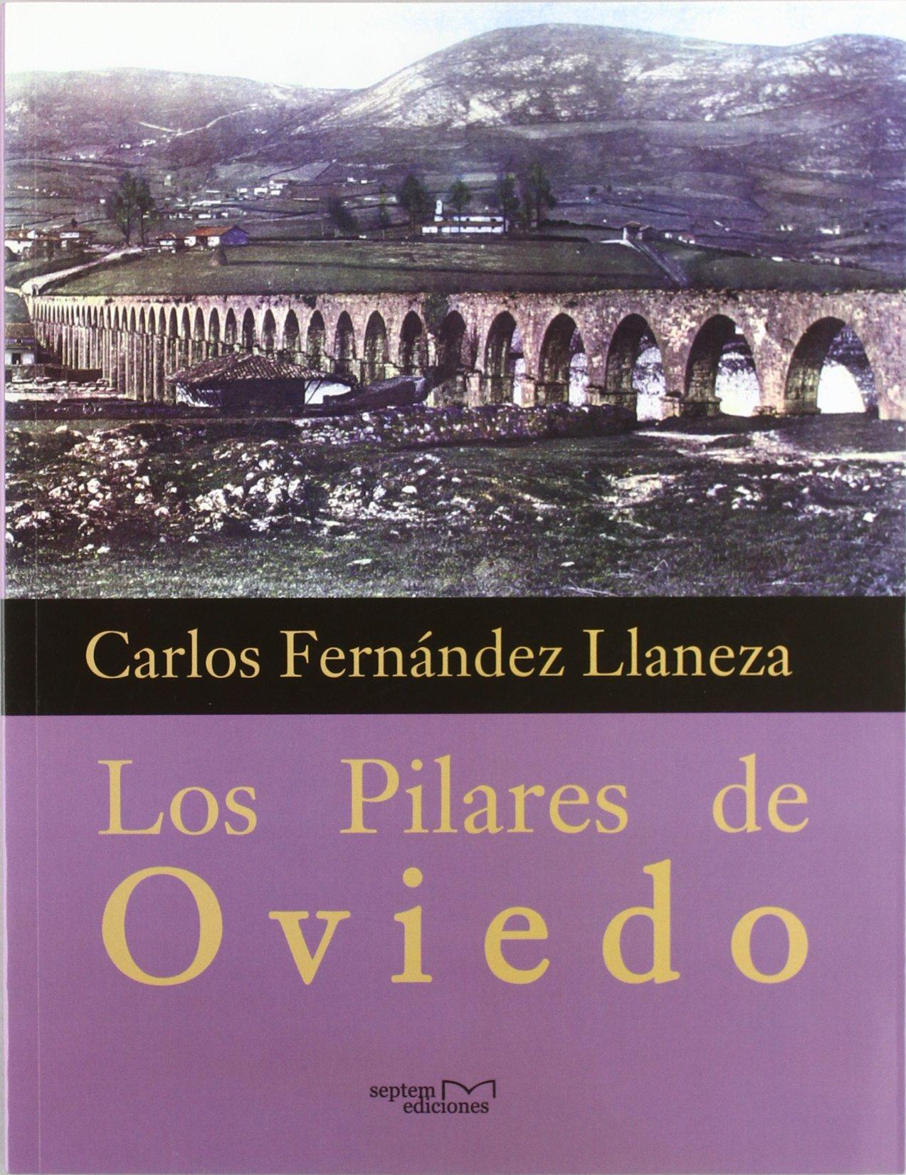 Los pilares de Oviedo: Amazon.es: Carlos Fernández Llaneza ...