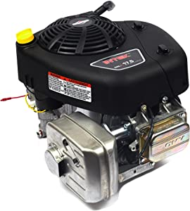 Briggs and Stratton 31R976-0016-G1