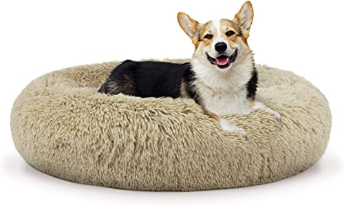 The Dog s Bed Sound Sleep Donut Dog Bed, Med Dog Biscuit Beige Plush Removable Cover Premium Calming Nest Bed