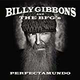 Perfectamundo [Vinyl LP]