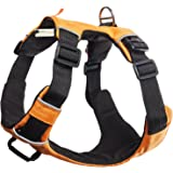 Paws & Pals Pet Harness for Dogs Cats - No-Pull Durable Padded Nylon Mesh Vest - Easy Secure Control