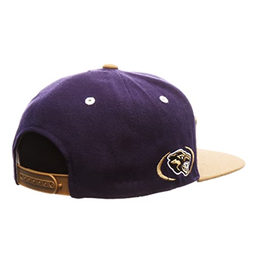 60ea493c916b3 Amazon.com   Alcorn State Braves Super Star 32 5 Adjustable Snapback Cap -  NCAA Flat Bill Zephyr Baseball Hat   Sports   Outdoors
