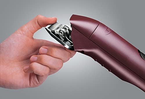 best-dog-clippers