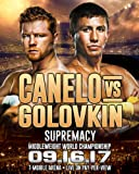 Amazon Price History for:New Canelo Vs. Golovkin 2017 Fight poster 24x36