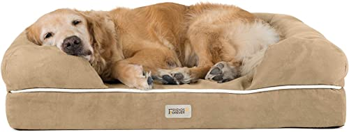 Best Orthopedic Dog Beds: Friends Forever Orthopedic Dog Bed