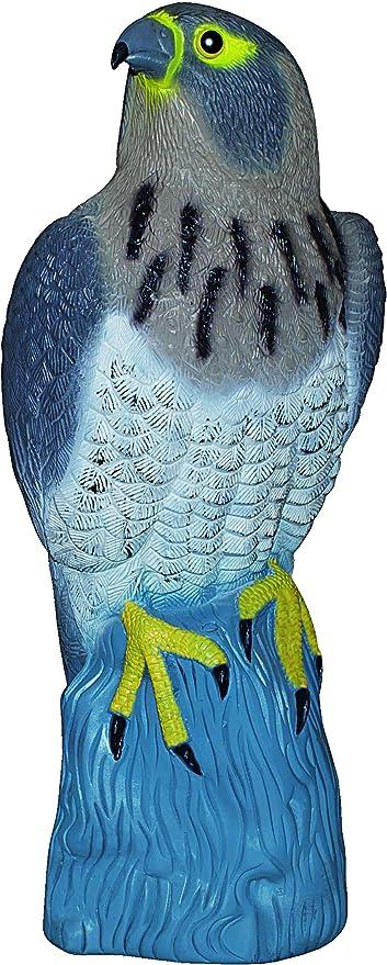 PROHEIM Halcón ahuyentador de Aves 42 cm - Figura de Ave rapaz sentada para espantar a los pájaros: Amazon.es: Hogar