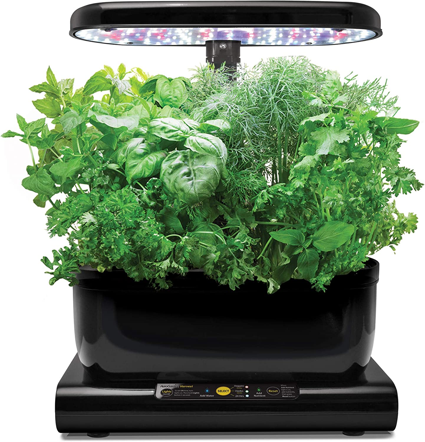AeroGarden Harvest - Kit de cultivo interior smart garden, 6 ...