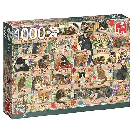 Jumbo Franciens Cats Jigsaw Puzzle (1000 Piece)