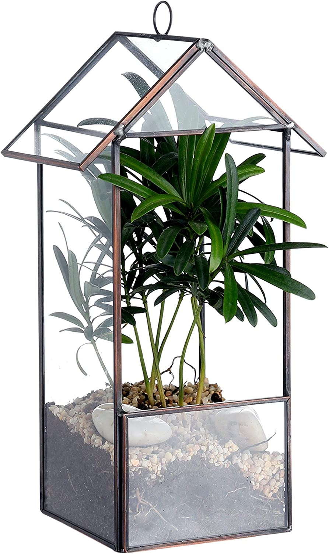 Whole Housewares Glass Geometric Terrarium Container House Shape 4.9X3.4X9.5 inch Tabletop for Succulent Air Plant Dark Brown