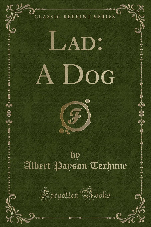 Read Online Lad: A Dog (Classic Reprint) ebook