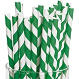 Green Striped Paper Straws (24 Pack)