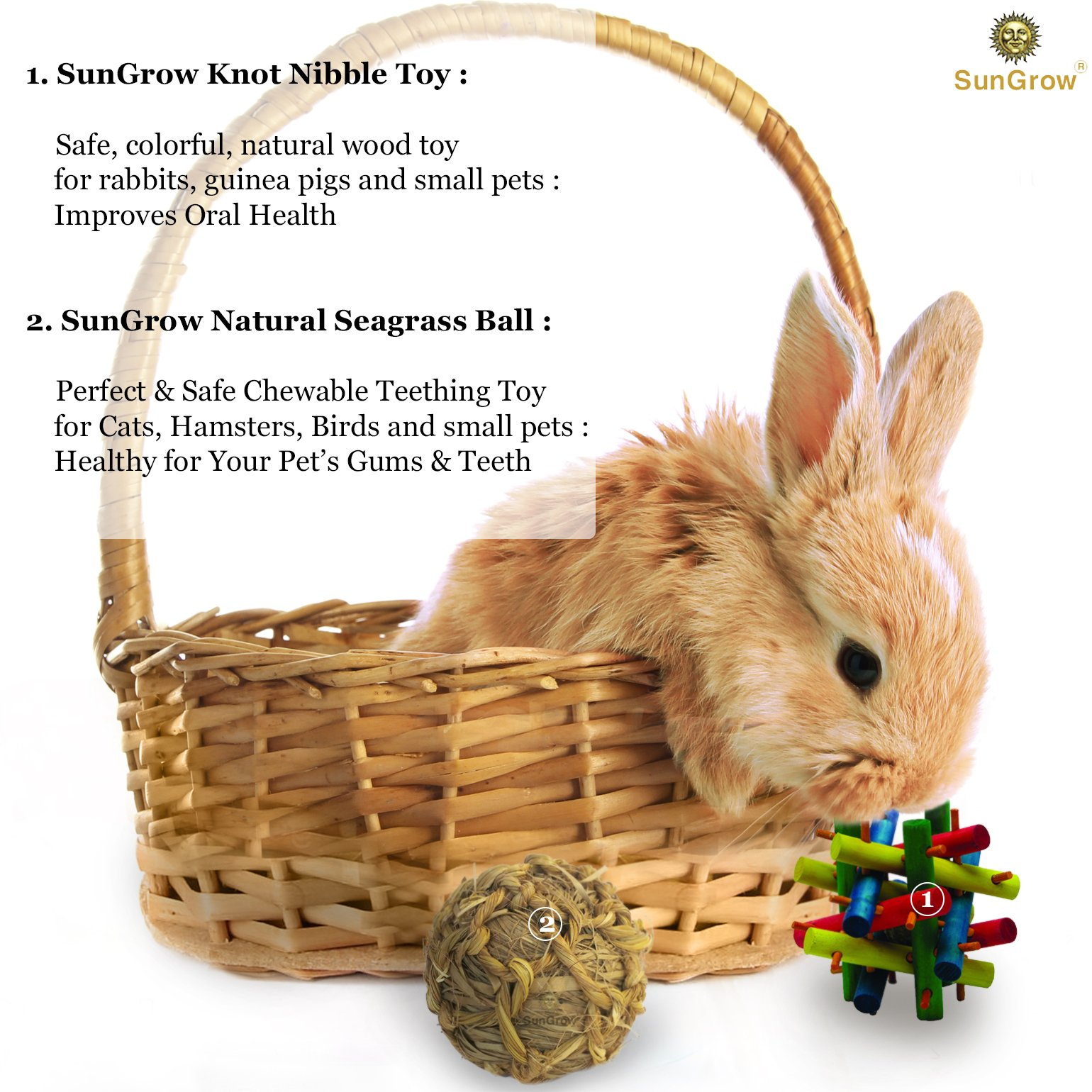 SunGrow Rabbit Wood Knot Nibble Toy: Suitable for Play and Chewing: Bright Colors: Natural Vegetable Dye: Provides stimulation & entertainment: For Rabbits, Guinea pigs & Chinchillas