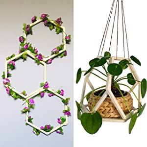 Wooden Hexagon Plant Hangers, Wall Trellis for Climbing and Trailing Vines and Flowers, Indoor Plant Decor, Crafts, Projects, Self-Assemble, Vertical Garden, Modern Display, DIY, 12 Piece Set