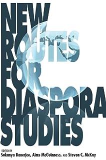 a concise companion to american studies rowe john carlos