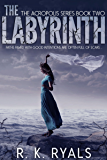 The Labyrinth (Acropolis Series Book 2)
