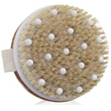 Amazon Price History for:Dry / Wet Body Brush by C.S.M - Clear Dead Skin Cells While Reducing Cellulite & Toxins - Natural Bristles for Better Exfoliation