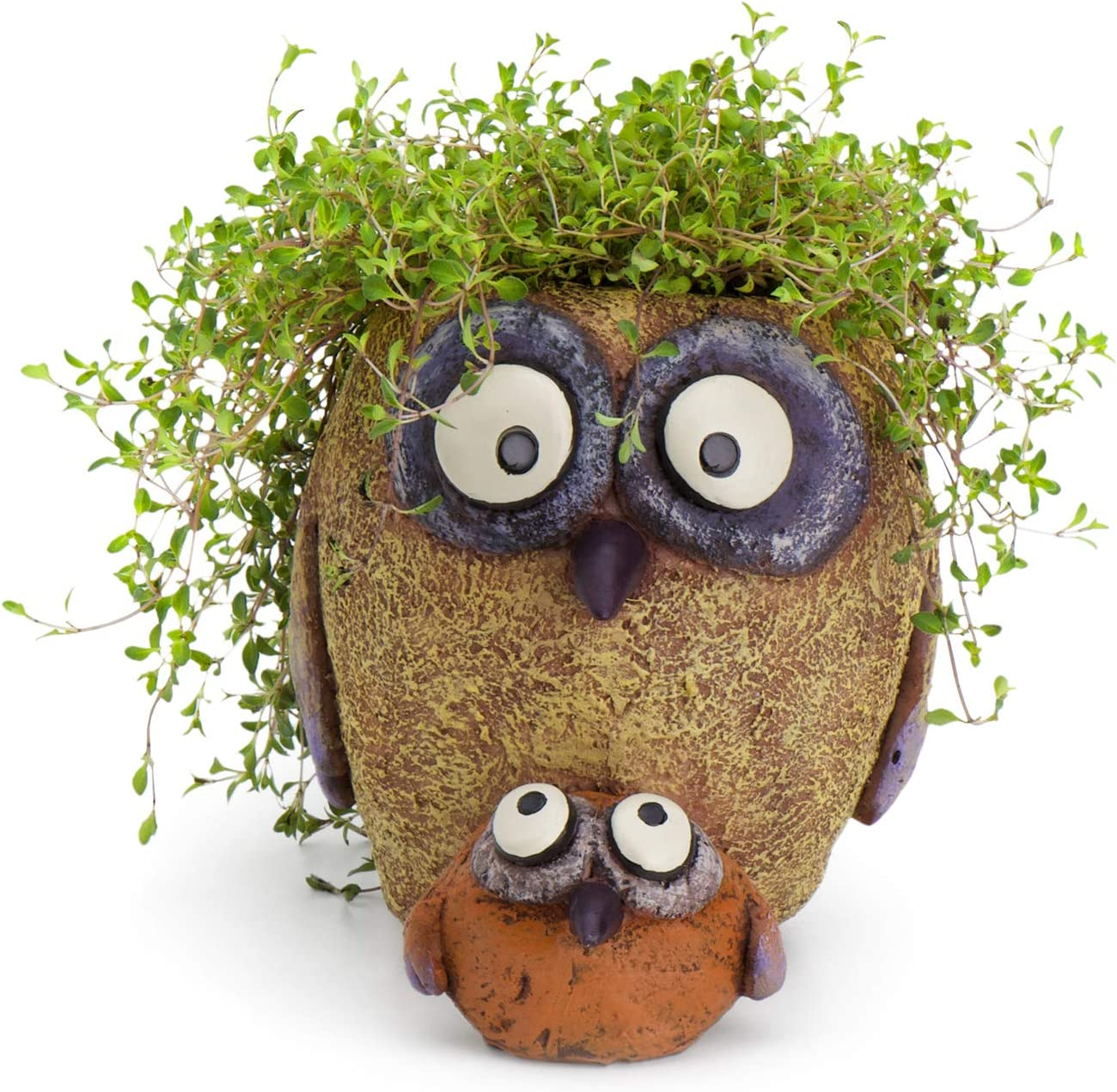 BAB and Sissy Owl Planter, by Blobhouse, Decorative Planter w/Drain Hole Statue for Home Outdoor Garden Lawn & Indoor Art Accent Sculpture