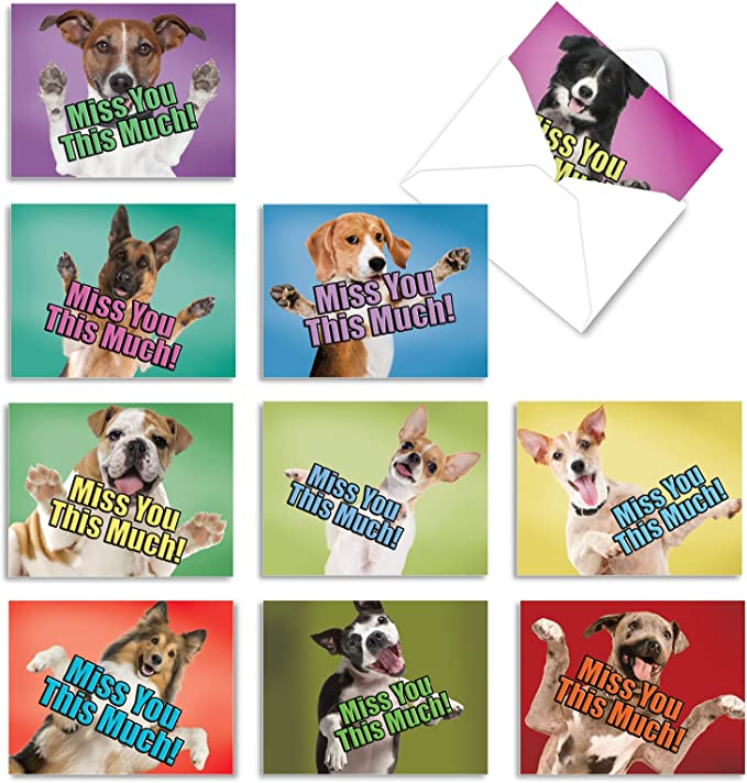 Details about  /Featuring A Genuine Rescue Dog Greeting Card In All Their Glory New