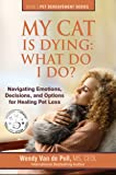My Cat Is Dying: What Do I Do?: Navigating