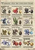 Age of Dragons Wyrming Egg Identification Chart Fantasy Art Anne Stokes Greeting Card
