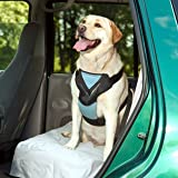 Bergan Complete Dog Car Harness System, Large, Blue