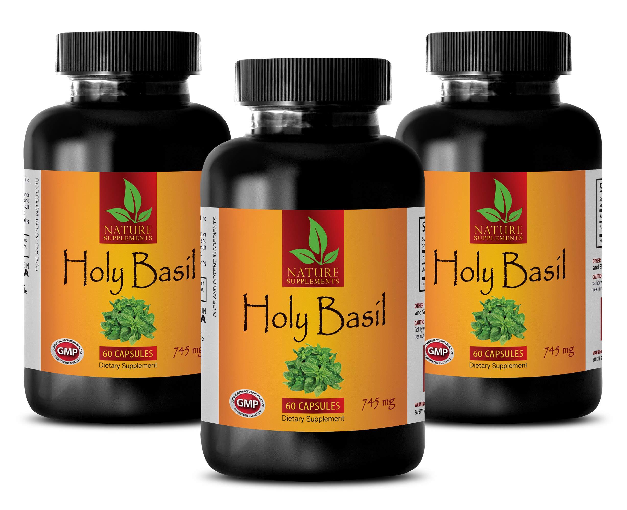 Cholesterol Balance - HOLY Basil 745MG - TULSI Extract - holy Basil Wild Harvest - 3 Bottles (180 Capsules)