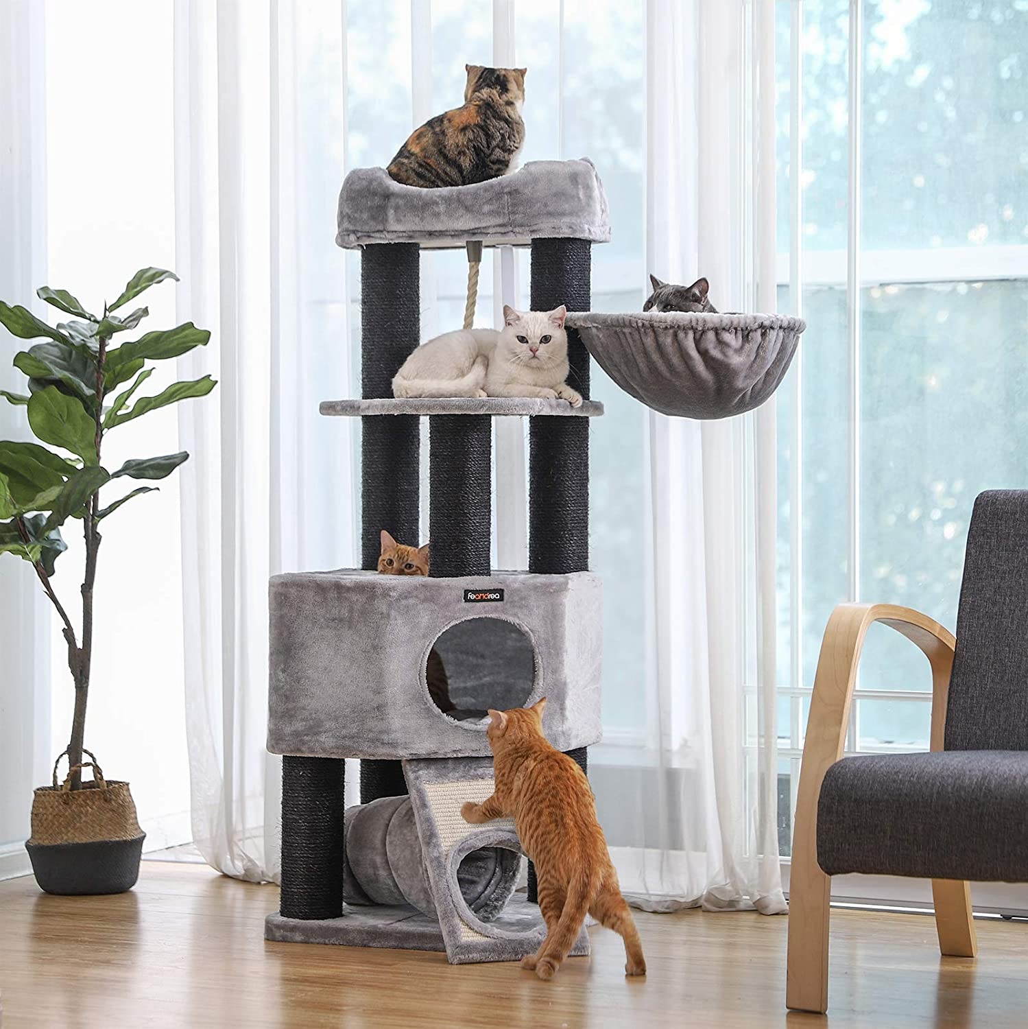 Grey And Black Cat Tree With Tunnel