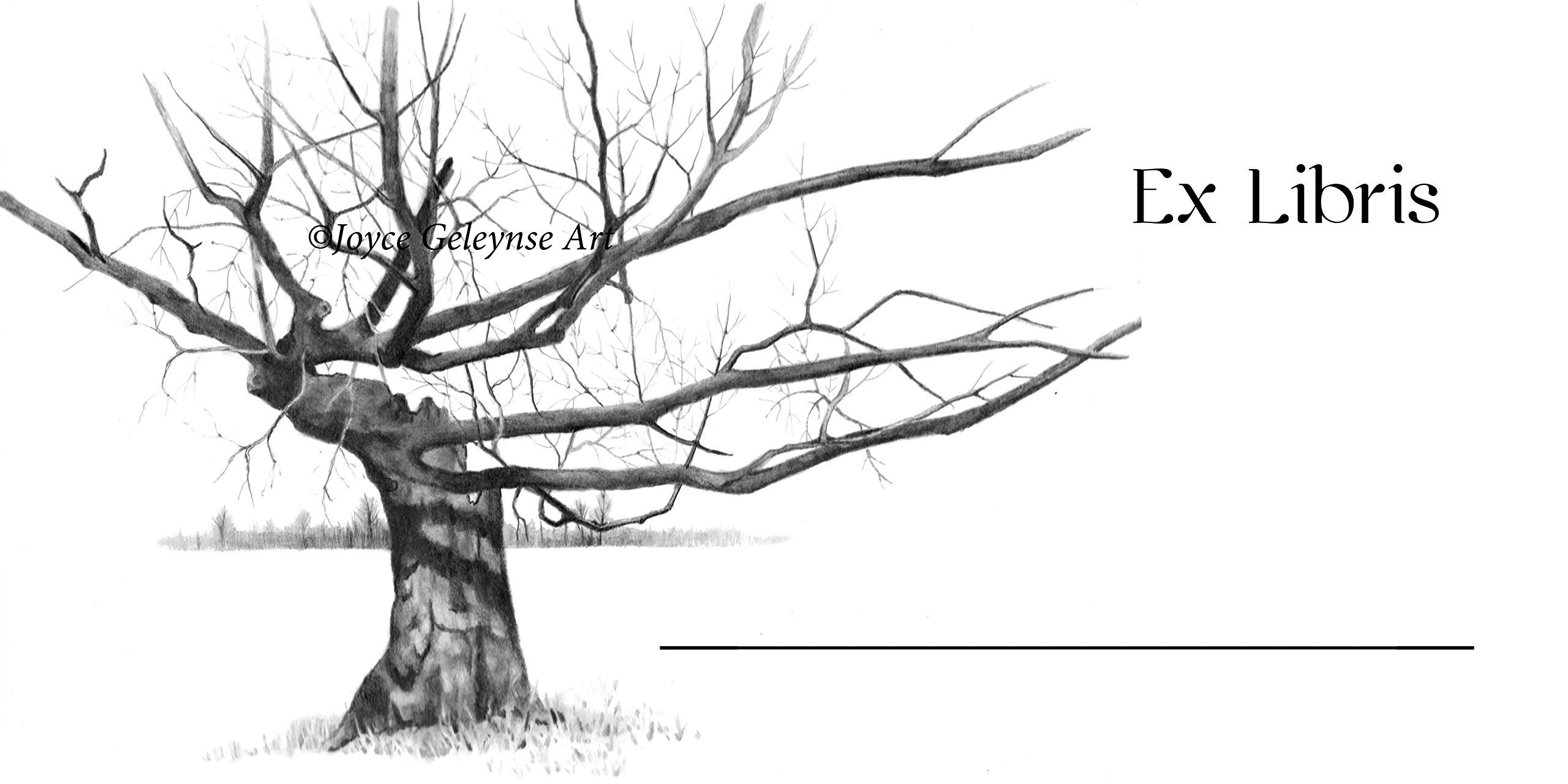 Book Stickers, Bookplate, Your Name,''EX LIBRIS'', Pencil Drawing of Gnarly, Weather-Beaten Bare Tree, Branches, With FREE Bookmark