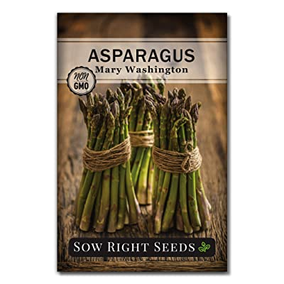 Sow Right Seeds - Mary Washington Asparagus Seed for Planting - Non-GMO Heirloom Packet with Instructions to Plant an Outdoor Home Vegetable Garden - Great Gardening Gift (1) : Garden & Outdoor