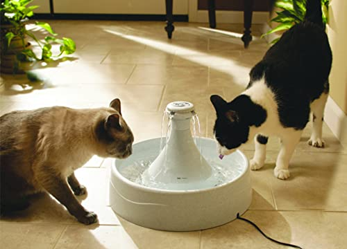 Best-Cat-Water-Fountain