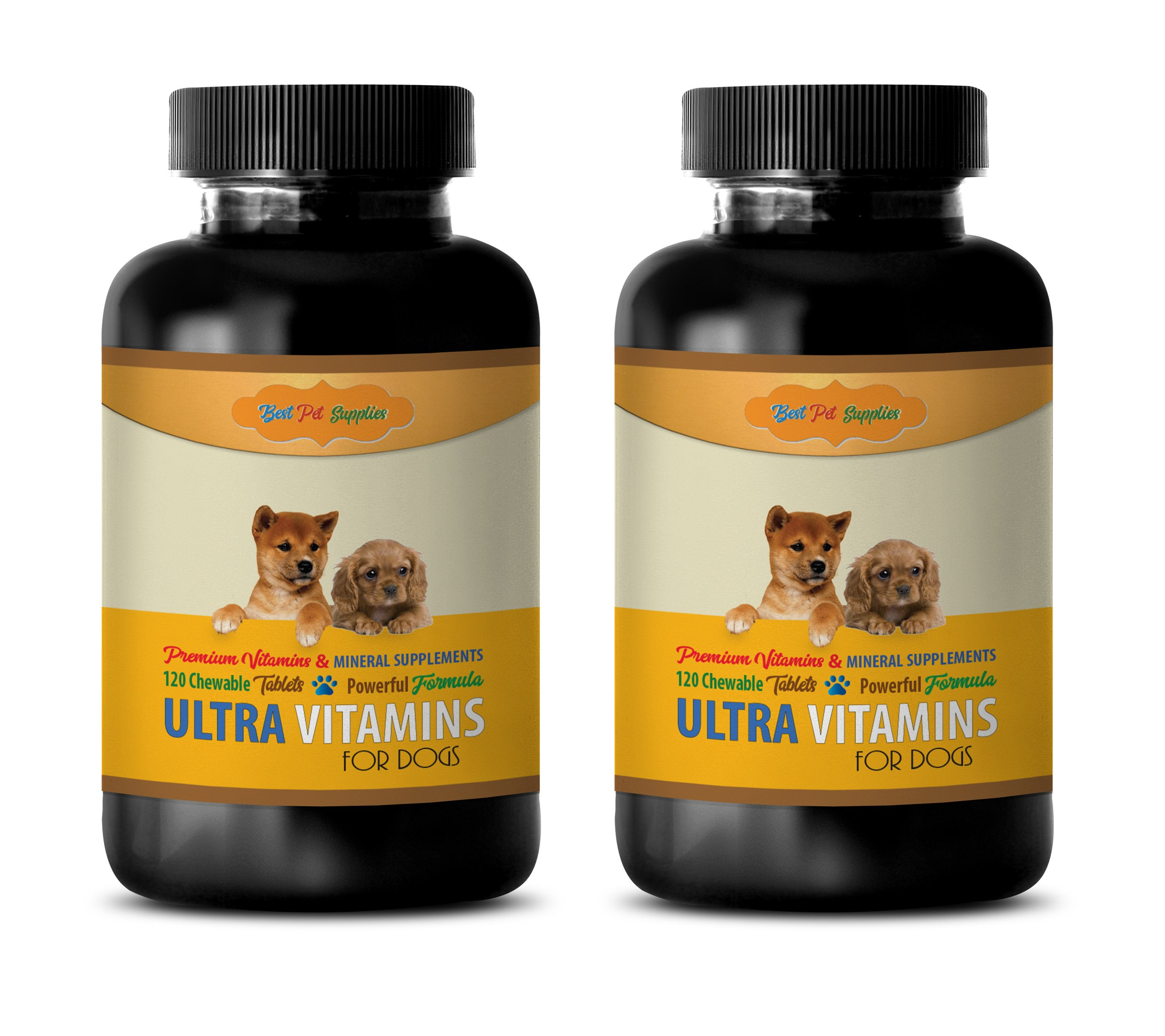 BEST PET SUPPLIES LLC dogs teeth cleaning treats - PREMIUM ULTRA VITAMINS - FOR DOGS ONLY - MINERAL SUPPORT - POWERFUL FORMULA - CHEWY TREATS - vitamin b for dogs - 240 Chews (2 Bottle) by BEST PET SUPPLIES LLC