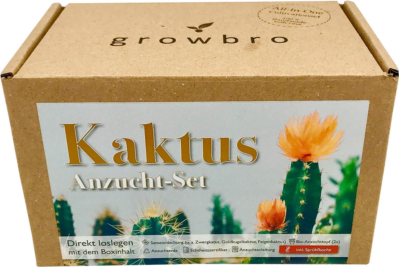 Juego de cactus de Growbro, incluye botella pulverizadora, regalo de Pascua, regalo de cumpleaños, suculentos, regalo para mujeres y hombres, regalo para invitados, plantas de interior, cactus