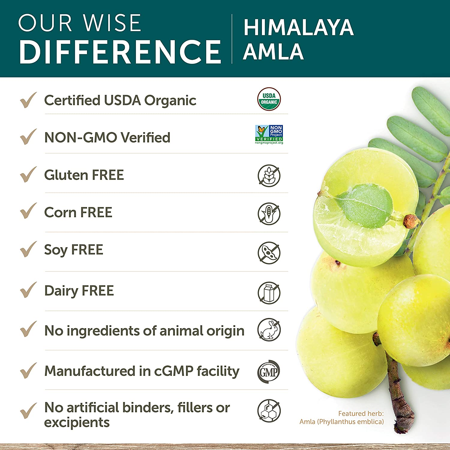Amazon.com: Himalaya Herbal Amla C - Vitamina C Natural - 60 ...