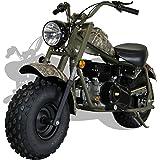 Apollo Agb 37b 125cc 4 Stroke Dirt Bike Pit Bike W