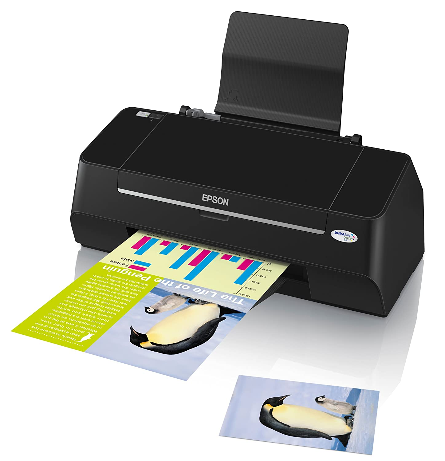 EPSON STYLUS S21 DRIVER FOR WINDOWS DOWNLOAD