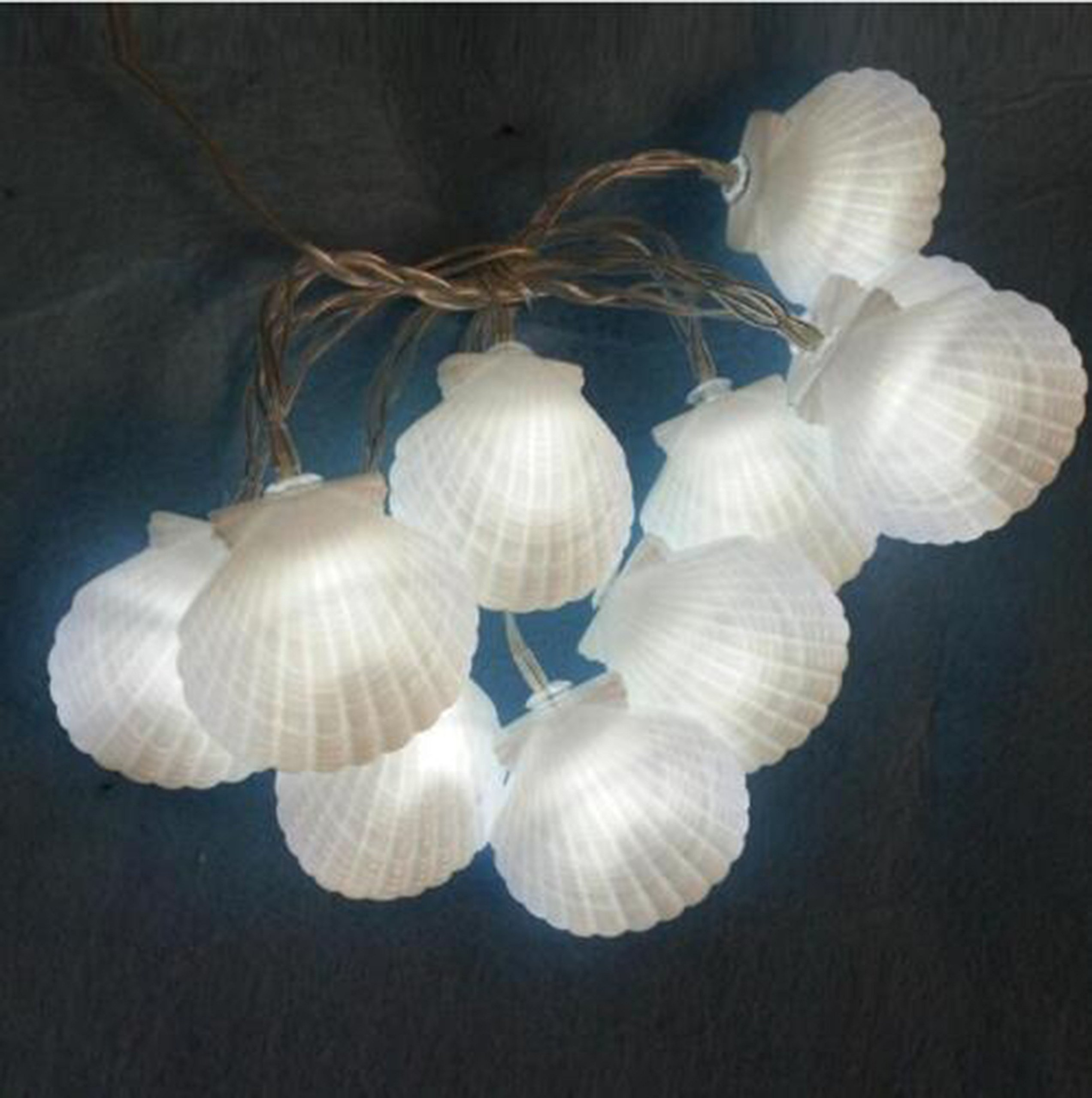 2.5m White 20 LED Sea Shell Lights Battery Operated LED Garland Party Decorative Lamp for Wedding Birthday Party Baby Shower Decoration Holiday Party Kids Room Decoration Photo DIY Props