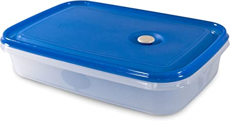 Carrefour 04176 Ovalado Caja 2L Azul, Transparente 1pieza(s) Recipiente de almacenar Comida - Recipiente para Alimentos (240,28 g, 1 Pieza(s)): Amazon.es: Hogar