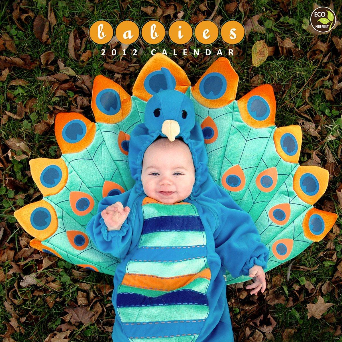 2012 Babies Wall Calendar